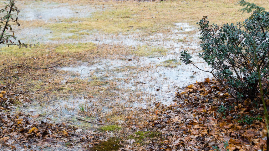 Photography by SG Atkinson: Rainy Day Back Yard Flood